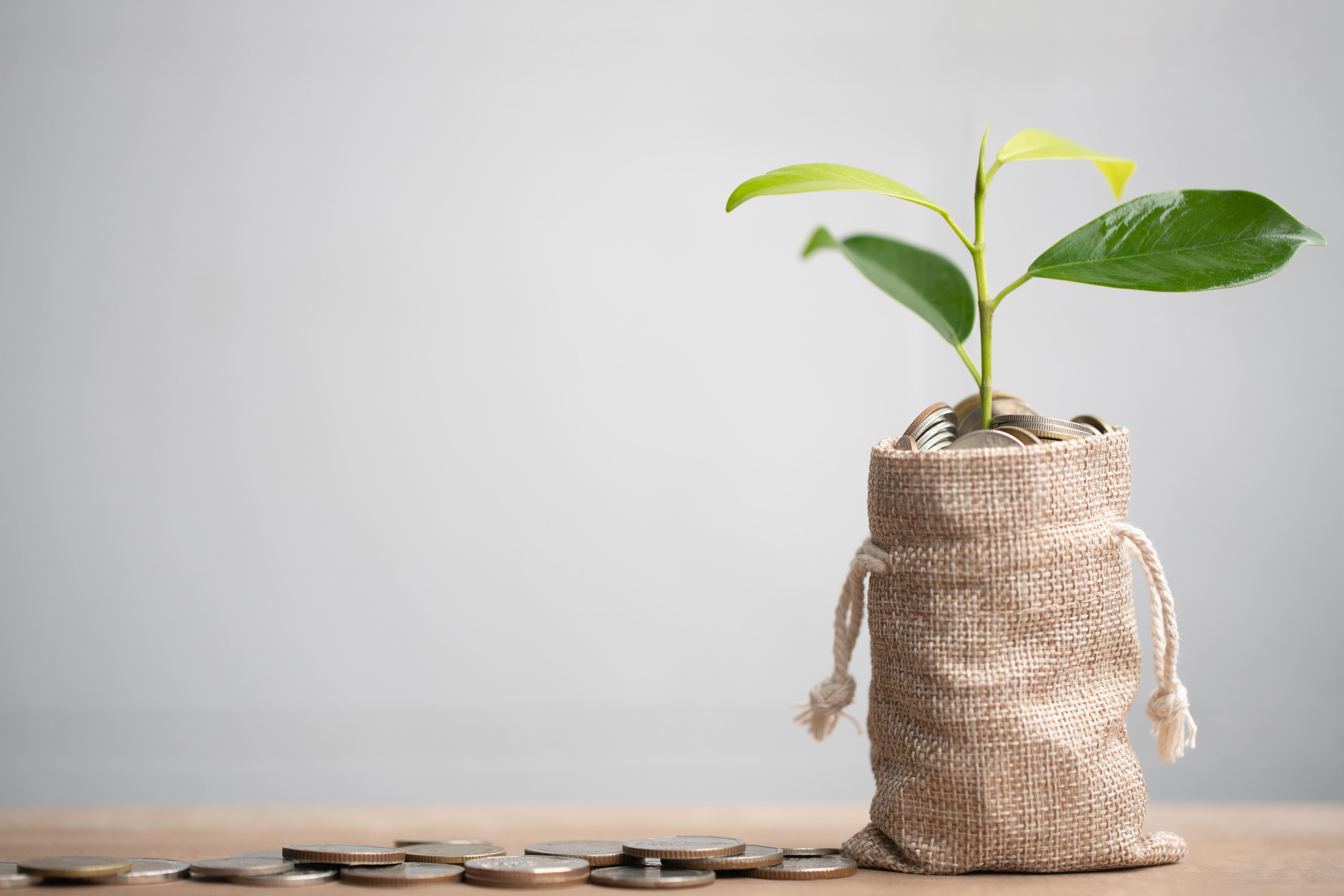 Liontrust ESG Trust names board of directors - Money Marketing